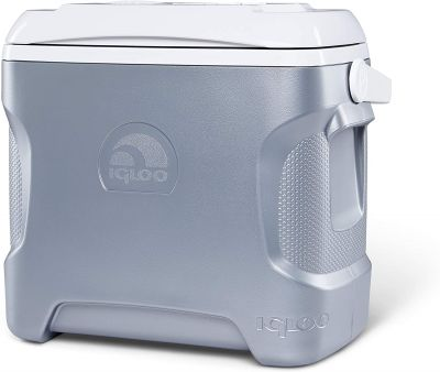 Introduction of car refrigerator with compressor